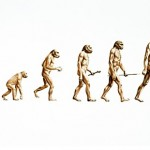 The rise of homo-socialnetworkus