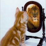 The executive mirror aims to improve self awareness