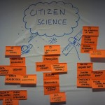 Papers explore the impact of citizen science for policy makers