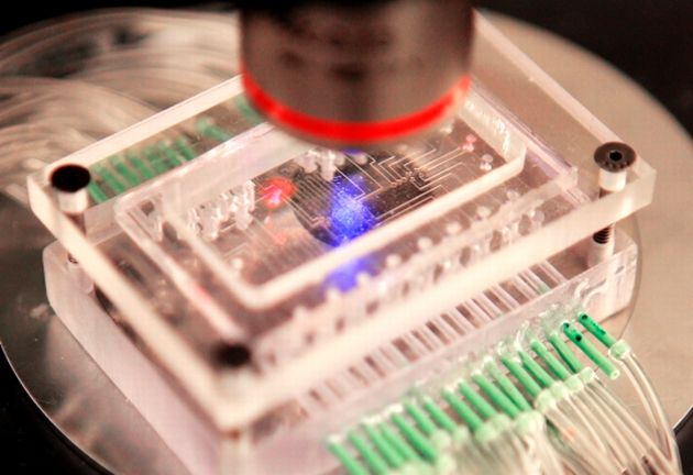 New lab on a chip promises to cut the costs of research | The ...