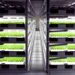The next wave of automated farming