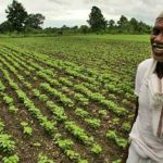 Social business on rural farms in India