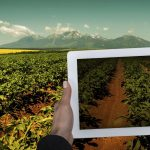 The role of big data in agriculture