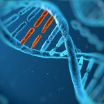 Collaborative network launches to tackle rare diseases