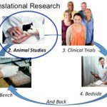 How the Learning Health System Network supports translational research